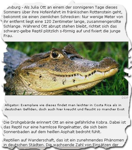 spiegel-reptilienkenntnisse.jpg